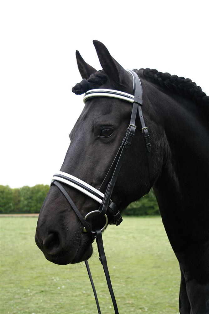 Harrys Horse Hoofdstel Bronze line Black & White maat cob