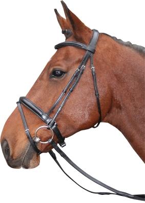 Harry's Horse Hoofdstel Gold line Wing met aansnoerneusriem pony full
