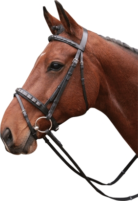 Harry's Horse Hoofdstel Silver line Rib pony  cob