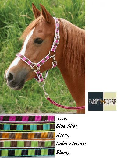 Harry's Horse Halsterset block celery green pony