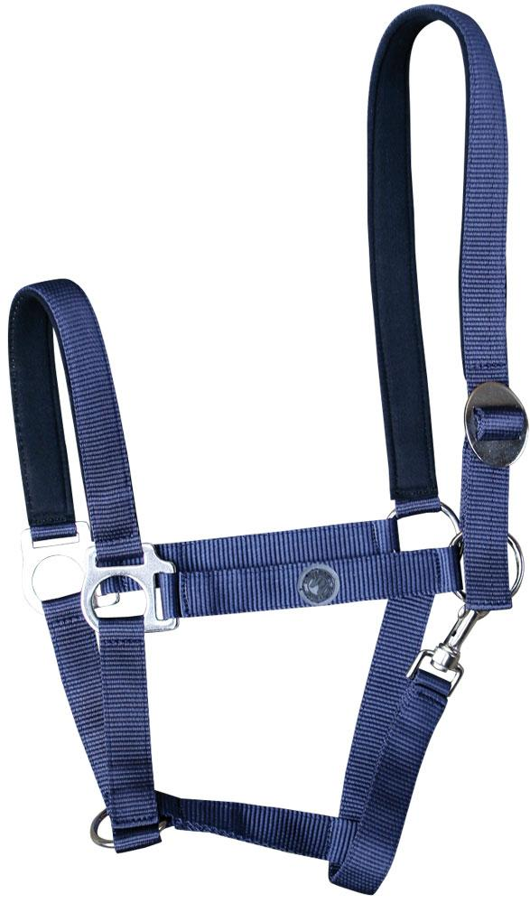 Harry's Horse halster domy suede padded navy pony cob full
