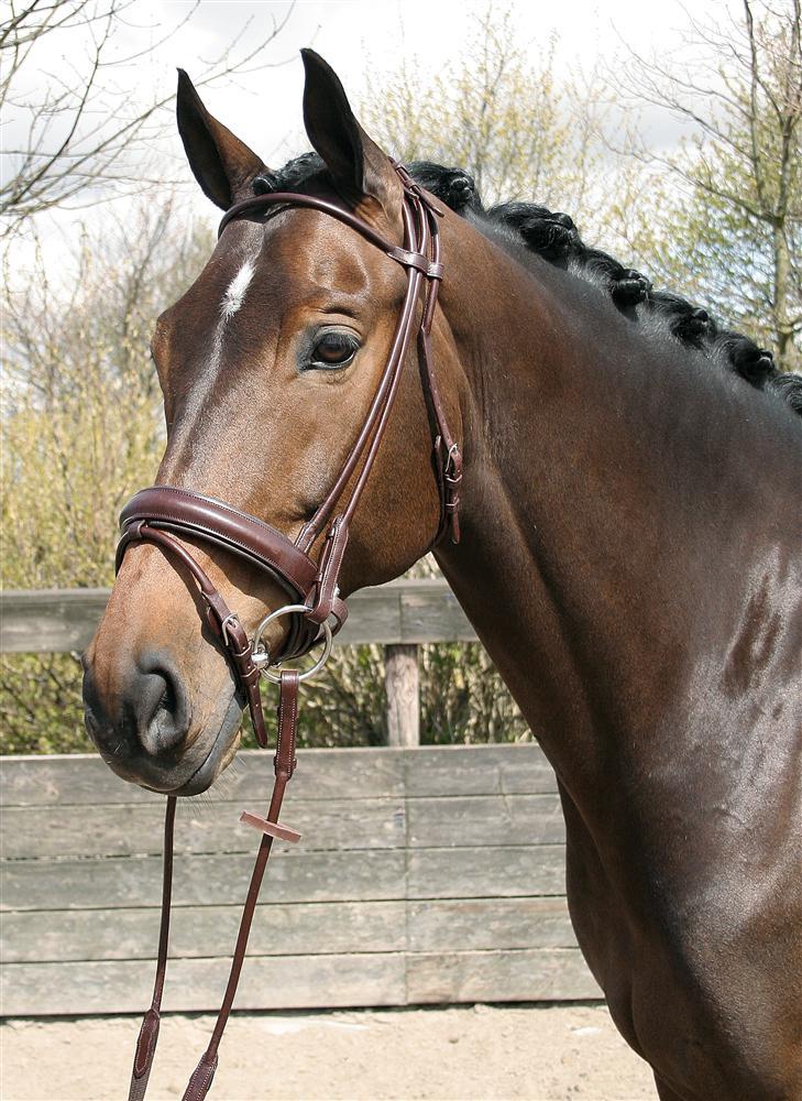 Harry's Horse® Hoofdstel rondgenaaid 'Bronze line' bruin maat pony