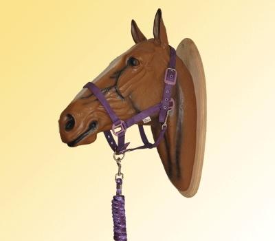 Harry's Horse suede halsterset wineberry paars maat pony