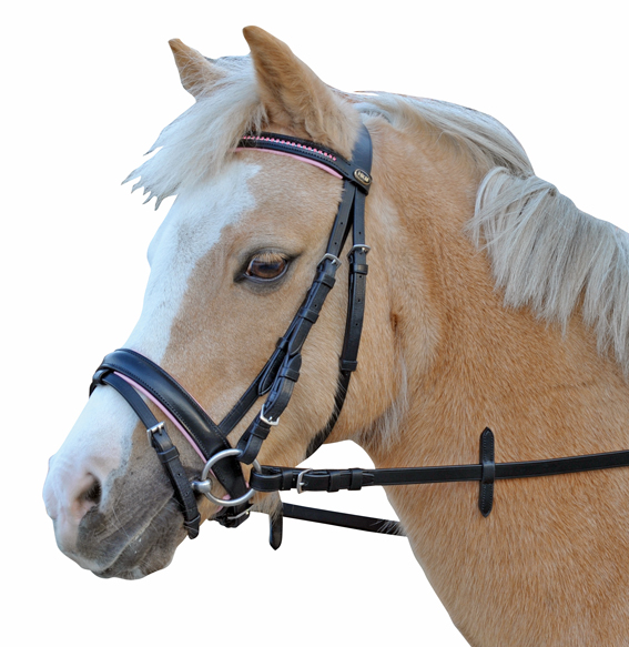 HKM Hoofdstel mona shet en pony rose