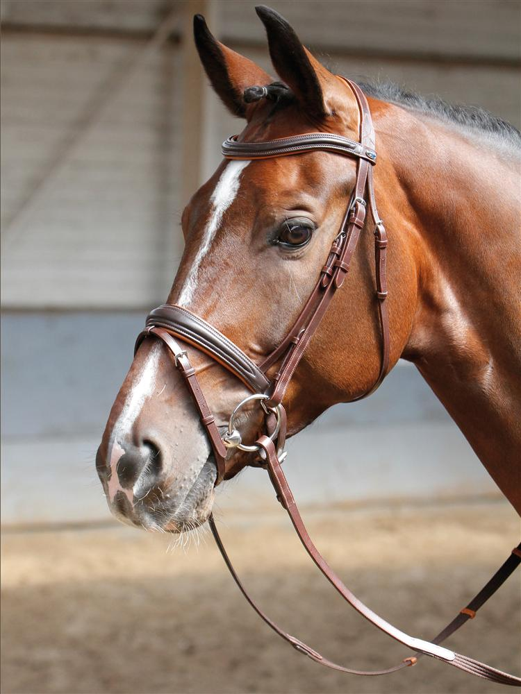 Harry's Horse Hoofdstel Soft bruin cob full