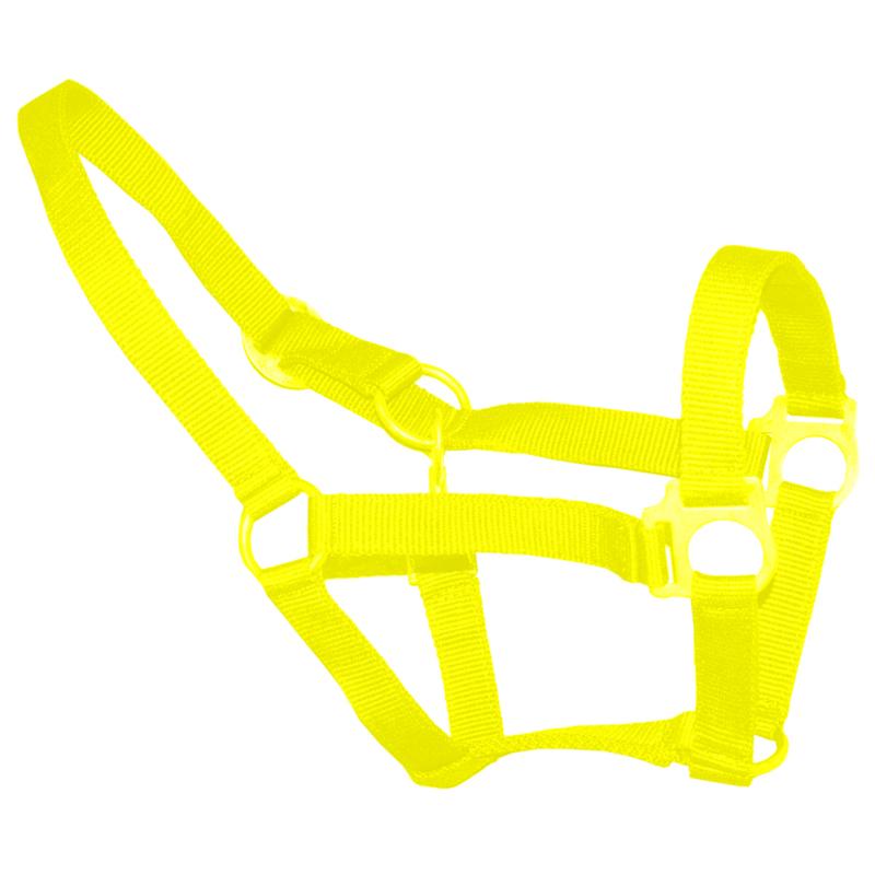 Neon geel halster economic pony