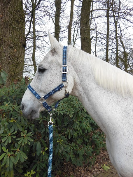 Horka Halsterset check blauw shet pony cob xtra full