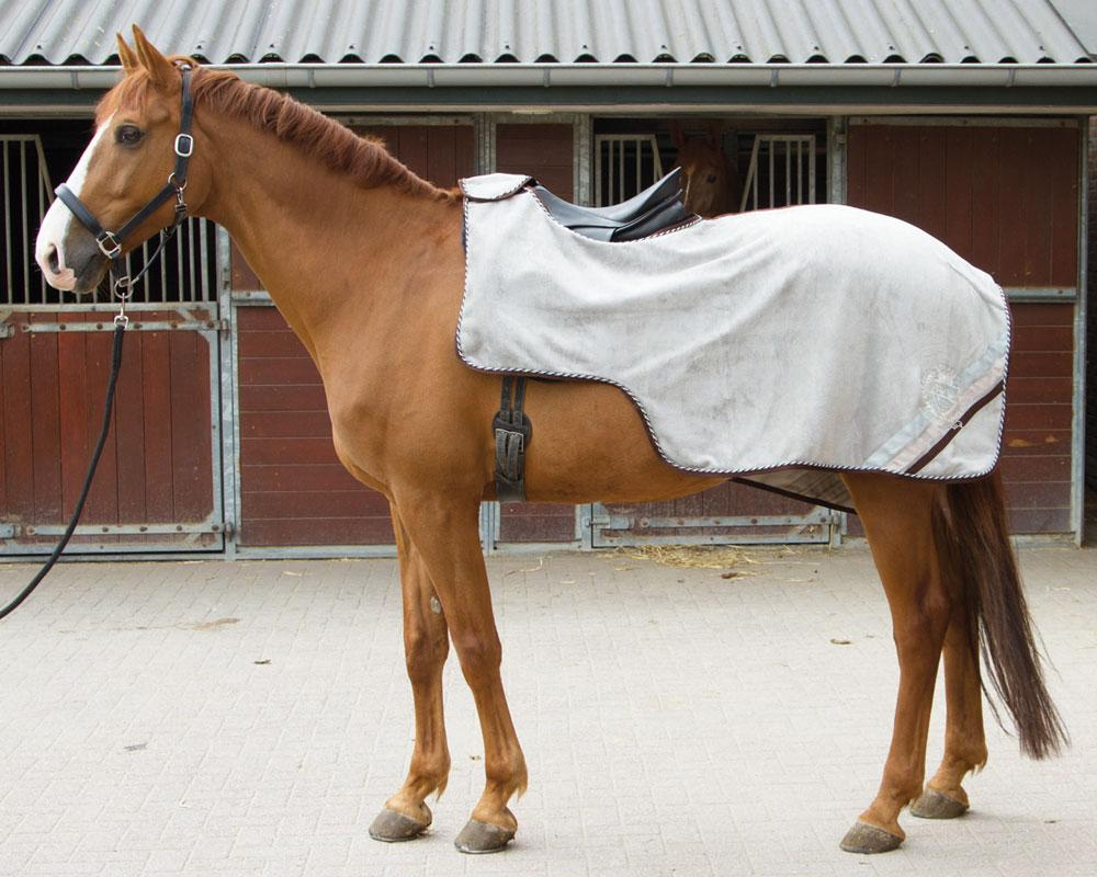 Harry's Horse Uitrijdeken Hoonah paloma full