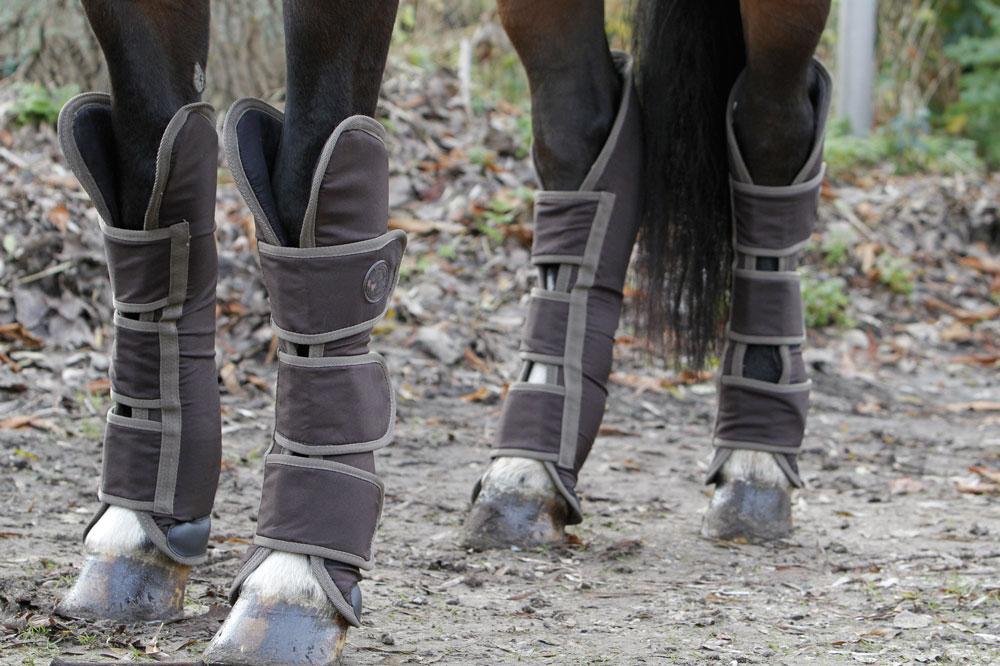 Harry's Horse Transportbeschermers HI-fit bruin