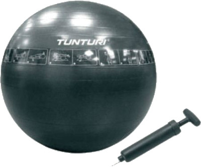 Dutch Ruiterfitheid gymball