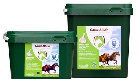 Garlic Allicin Granulate EU 750 gram