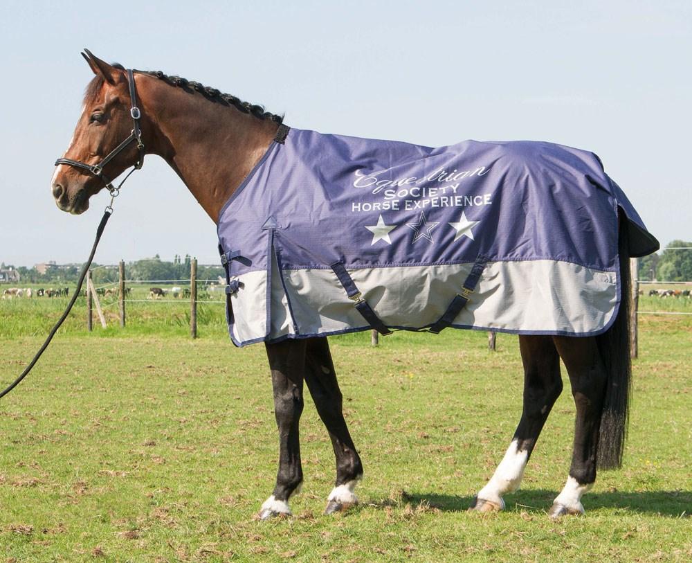 Harry's Horse Buitendeken Deken Thor 0gr Fleece Crown Blue w/print 175 185 205