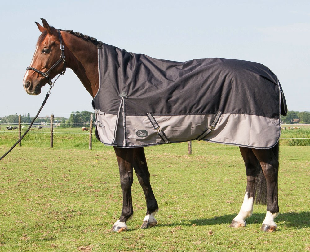 Harry's Horse Buitendeken Deken Thor 200gr Highneck Stretch Limo 145