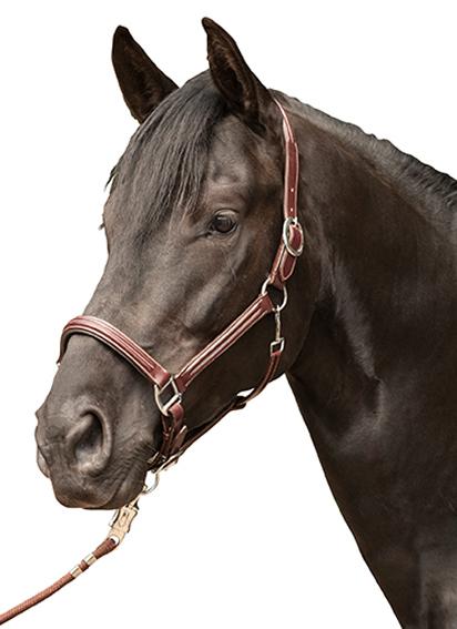 Leren Lederen halster -Veronika- bruin pony cob full
