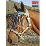 Harrý's horse vliegenfrontriem kleur mood