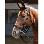 Harry's Horse hoofdstel / halster shet pony  full xtra full