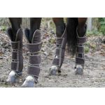 Harry's Horse Transportbeschermers HI-fit bruin
