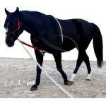 F.R.A. peli longeerhulp mini-shet, shet, pony, cob (middel), full (paard), xtra full (shire)