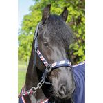 Halsterset Friesian full Harry's Horse